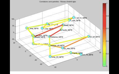 Force des interactions au sein d'un réseau fonctionnel lié à l'évocation lexicale